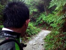 Jalan setapak menuju Kawah Upas.